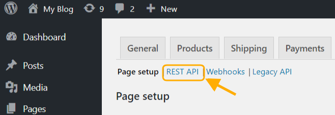 Rest API Settings